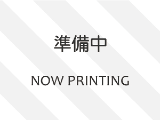 TOYOTA OTHER